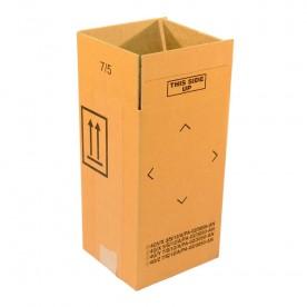 4GV Cartons
